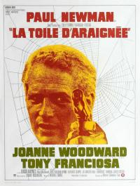 La Toile d'araignée / The.Drowning.Pool.1975.1080p.BluRay.x264-PSYCHD
