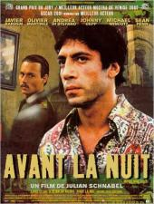 Avant la nuit / Before.Night.Falls.2000.1080p.BluRay.x264-YIFY
