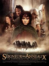 Le Seigneur des anneaux : La Communauté de l'anneau / The.Lord.Of.The.Rings.The.Fellowship.Of.The.Ring.2001.EXTENDED.1080p.10bit.BluRay.6CH.x265.HEVC-PSA