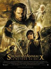 Le Seigneur des anneaux : Le Retour du roi / The.Lord.of.the.Rings.The.Return.of.the.King.2003.EXTENDED.720p.BluRay.X264-AMIABLE