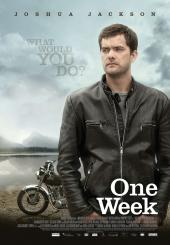 One.Week.2008.1080p.BluRay.x264-LCHD