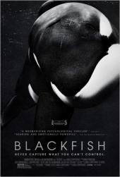 Blackfish / Blackfish.2013.LIMITED.DOCU.1080p.BluRay.x264-GECKOS