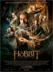 Le Hobbit : La Désolation de Smaug / The.Hobbit.The.Desolation.of.Smaug.2013.1080p.BluRay.x264-YIFY