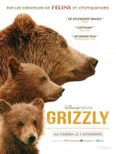 Grizzly / Bears
