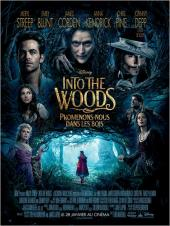 Into the Woods / Into.the.Woods.2014.1080p.BluRay.x264-SPARKS