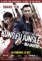 Kung Fu Jungle / Kung.Fu.Jungle.2014.MULTI.1080p.BluRay.x264.AC3-EXTREME