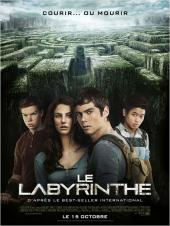 Le Labyrinthe / The.Maze.Runner.2014.1080p.BluRay.x264-SPARKS