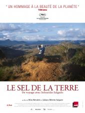 Le Sel de la terre / The.Salt.of.the.Earth.2014.LIMITED.DOCU.1080p.BluRay.x264-ROVERS