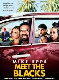 Meet The Blacks / Meet.The.Blacks.2016.1080p.BluRay.x264-GECKOS