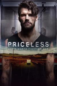 Priceless / Priceless.2016.1080p.BluRay.x264-AMIABLE