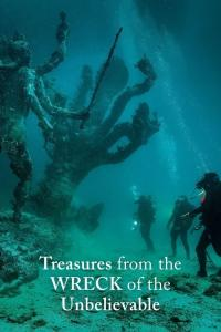 Treasures from the Wreck of the Unbelievable / Treasures.From.The.Wreck.Of.The.Unbelievable.2017.1080p.NF.WEBRip.DDP5.1.x264-TOMMY