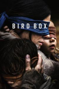 Bird Box / Bird.Box.2018.HDRip.XviD.AC3-EVO