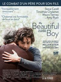 My Beautiful Boy / Beautiful.Boy.2018.MULTi.1080p.HDLight.x264.AC3-EXTREME