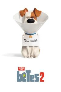 The.Secret.Life.Of.Pets.2.2019.HDRip.AC3.x264-CMRG